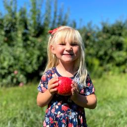 A Guide to Apple Picking in Bucks County (and Nearby)