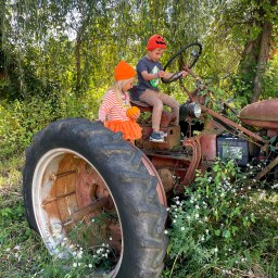 Weekday Fall Activities to Do with Kids